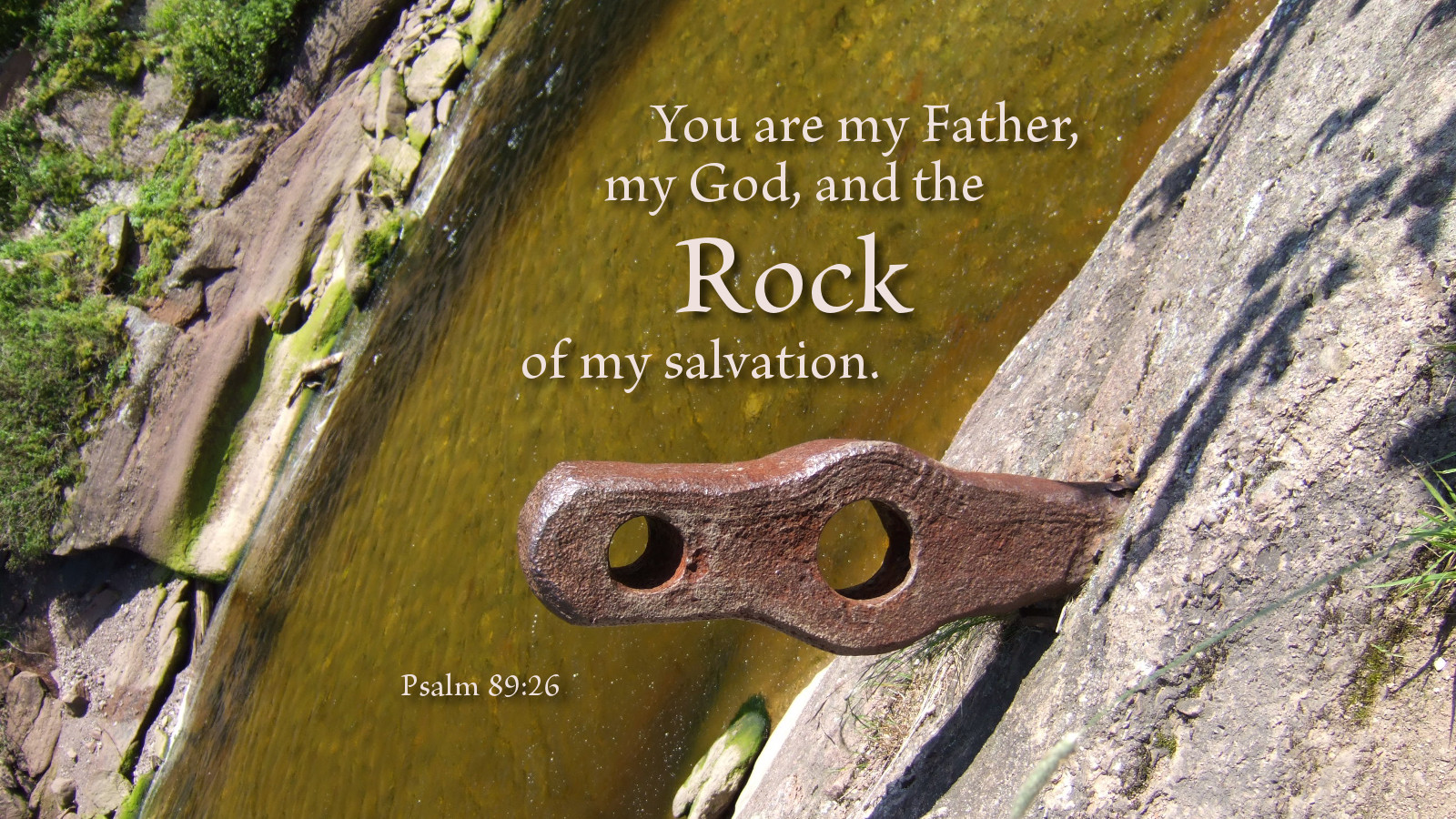Image result for Psalm 89:20-37