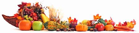 Thanksgiving-Turkey-Banner-01