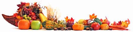 Thanksgiving-Turkey-Banner-01
